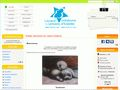 Aperçu de : Lezard creatif EB - Images, outils en ligne